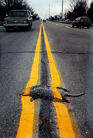 roadpaintingprintenlarge